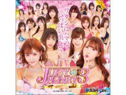Pジューシーハニー3 挿入歌アルバム(1)