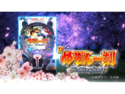 Pめぞん一刻~Wedding Story~_予告PV