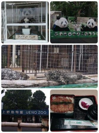 02_上野動物園のパンダ